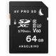 AVP064SDV60