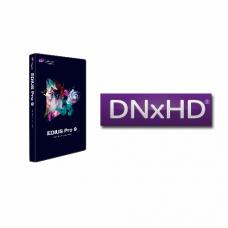 DNxHD opzione per EDIUS Pro 9